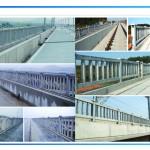 桥梁护栏模具施工案例