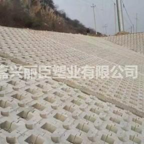 新型连锁型水利护坡模具堤坝及河道施工案例