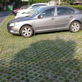 八字植草草坪砖塑料模具施工案例
