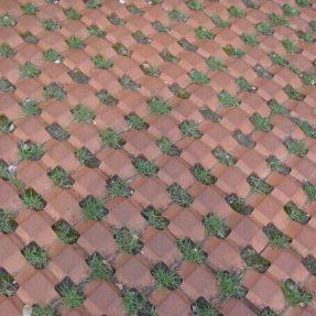 植草井字砖模具施工案例
