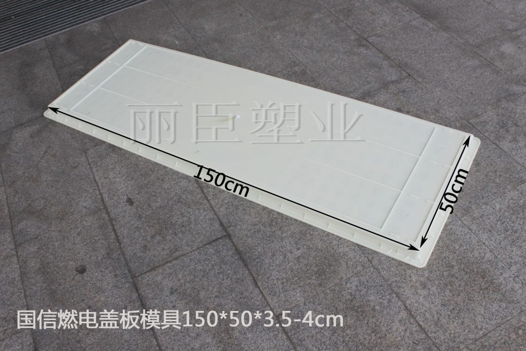 国信燃电盖板模具