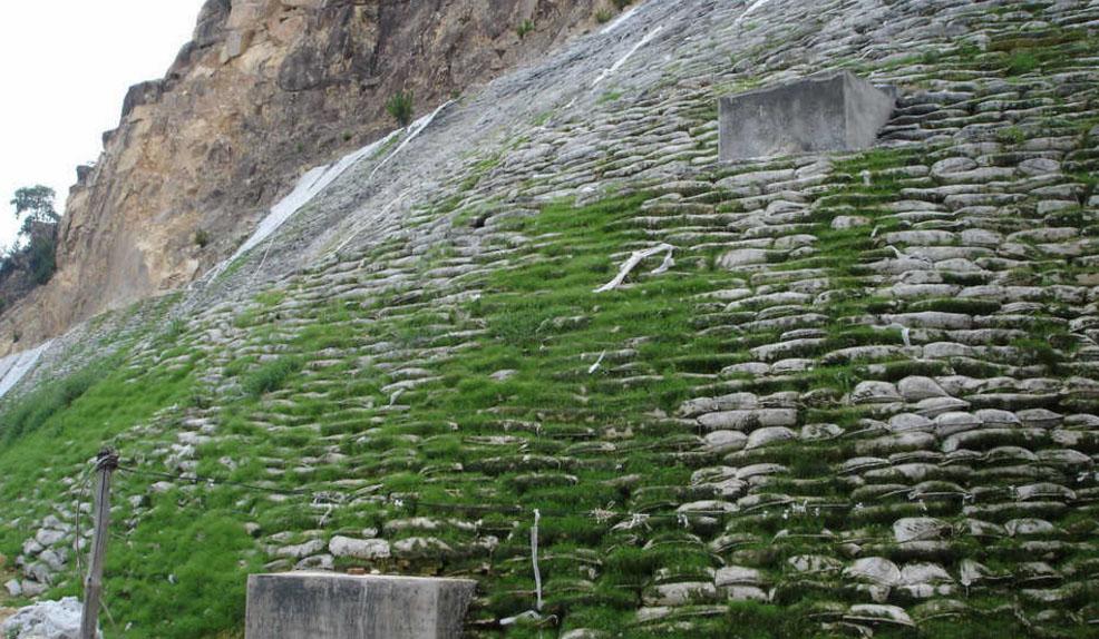 生态护坡工程案例