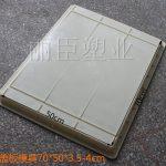 电力集团专用水泥盖板模具