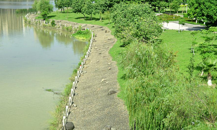 河道生态护坡
