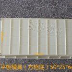 820克平板塑料模具