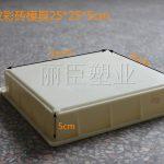 市政专用斜条纹水泥彩砖塑料模具