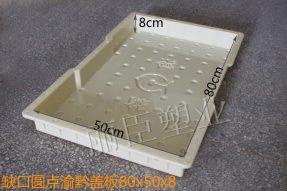 缺口圆点渝黔混凝土盖板塑料模具