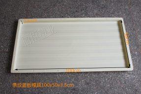 预制混凝土条纹盖板塑料模盒