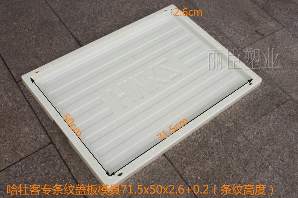 哈牡客专盖板塑料模具