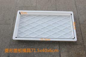 菱形盖板模具