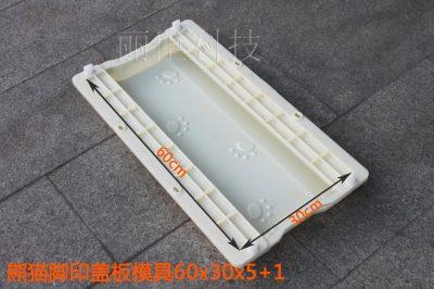 熊猫脚印下水道盖板塑料模具